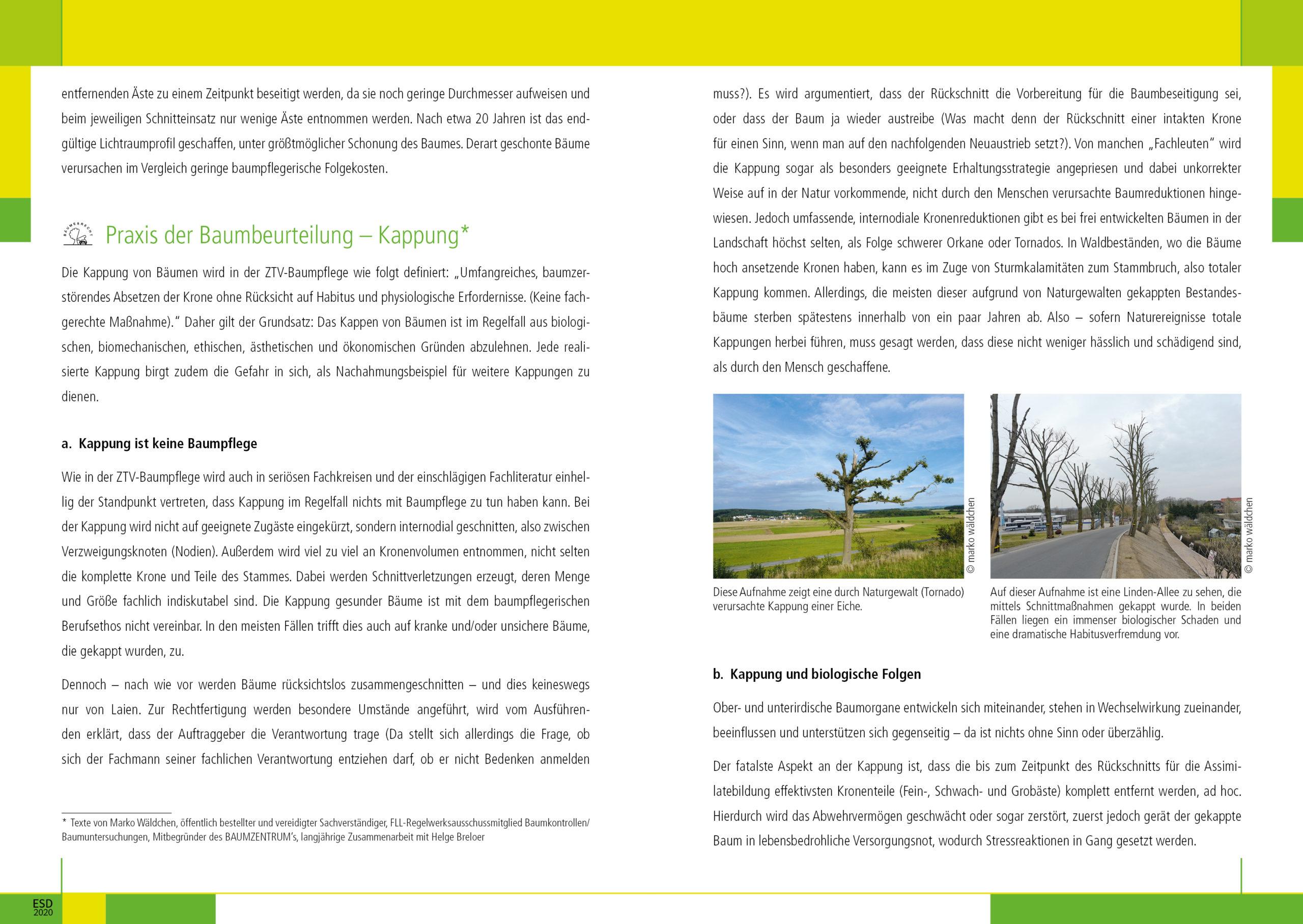 03_Verkehrssicherungspflicht_202010